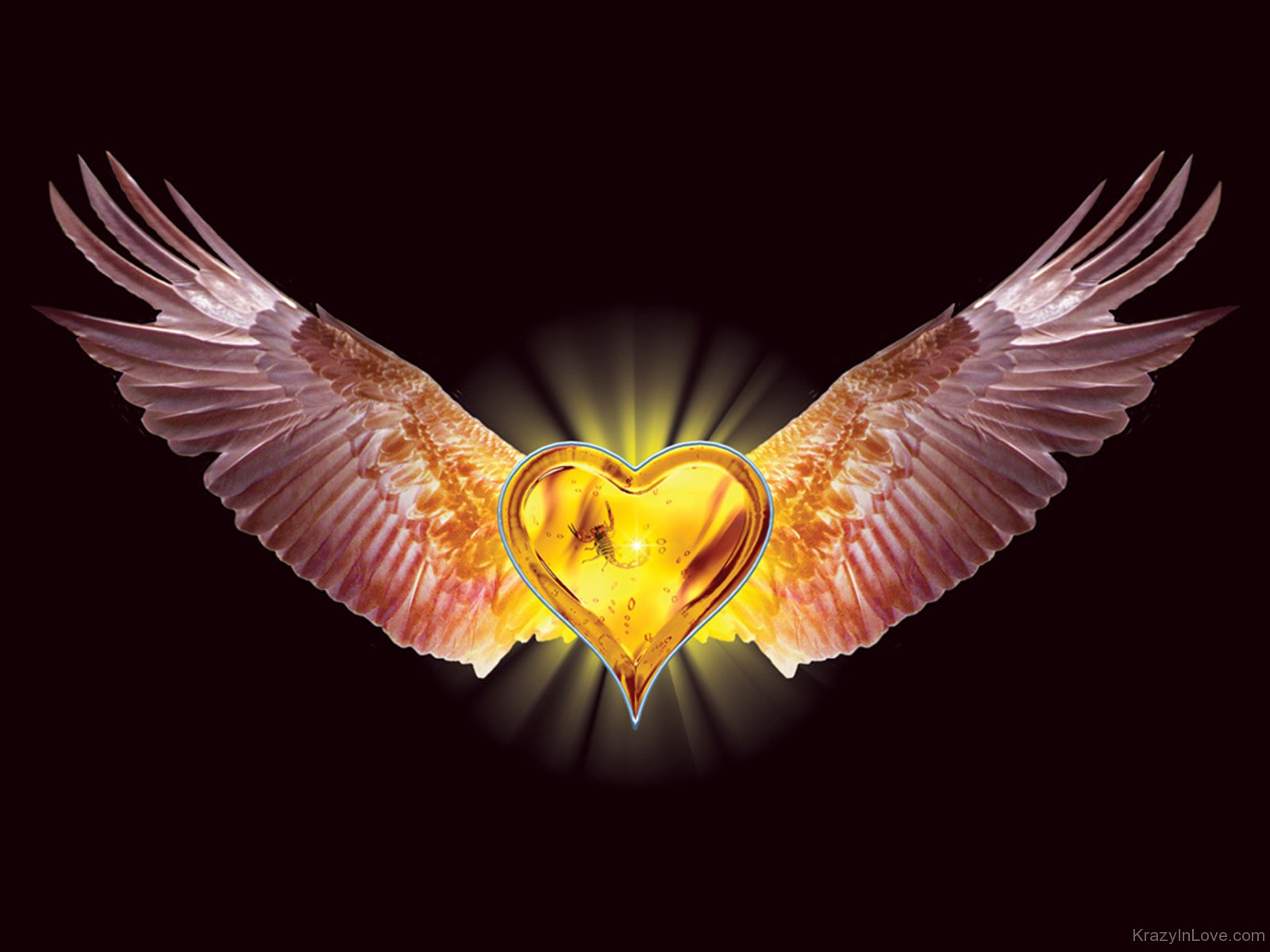golden heart with wings rh krazyinlove com pictures of hearts with wings images of hearts with angel wings