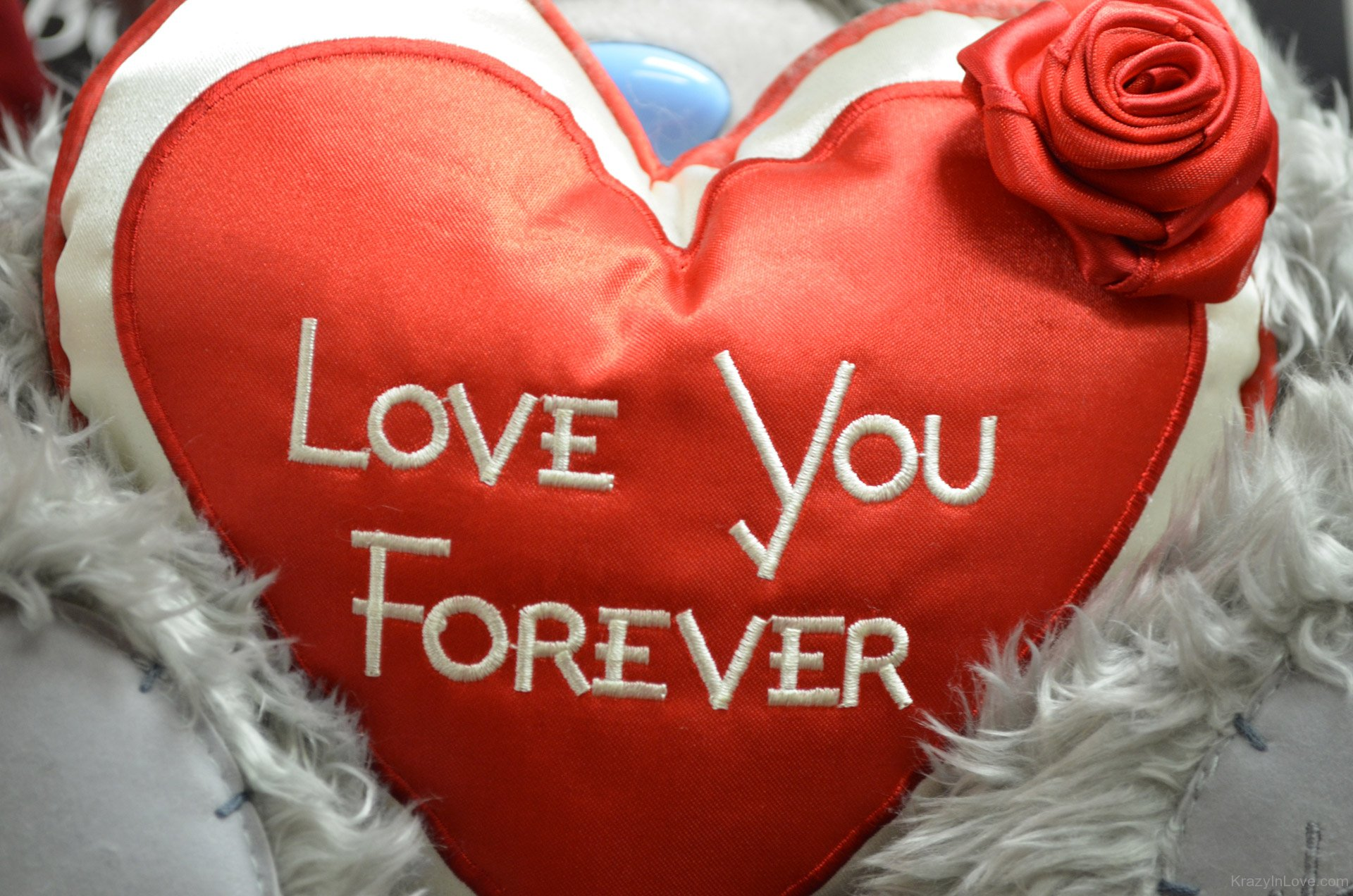 love forever love pictures images page 10. Black Bedroom Furniture Sets. Home Design Ideas