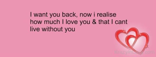i love you i want you back