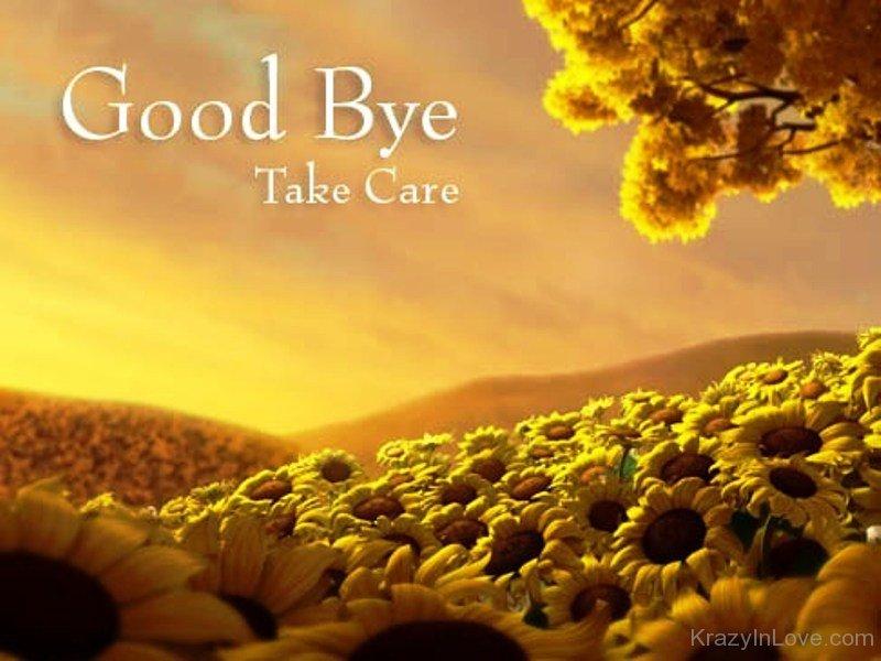 Good Bye Take Care