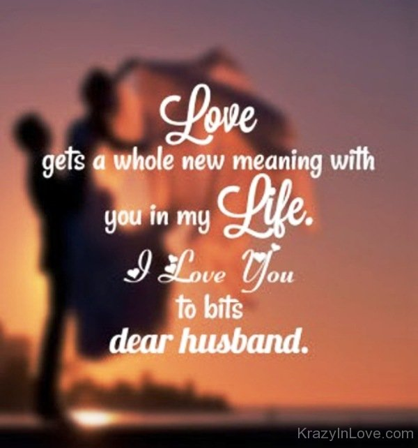 I Love You To Bits Dear Husband